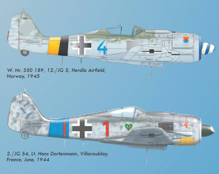 EDU7435_Fw190A-8WE_camo